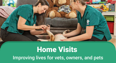Home Visits Improving lives for vets, owners, and pets