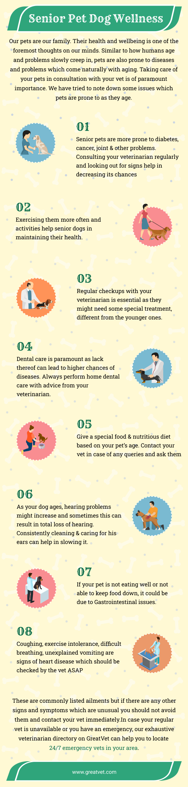 Senior Pet Dog Wellness Infographic - GreatVet