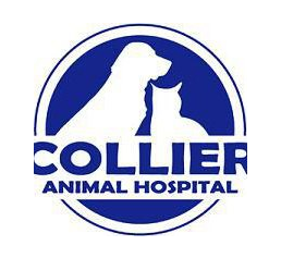 Collier Animal Hospital